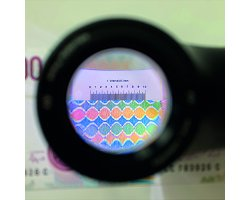 Led overlay magnifier