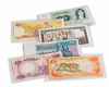 COVERS FOR BANKNOTES BASIC 204